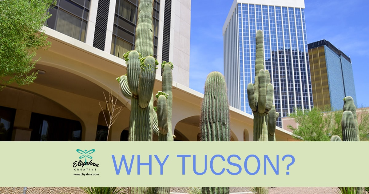 Tucson Web Design  Why Tucson Web Design Is The Best In The West Tucson web design